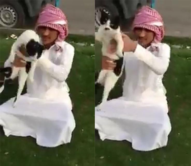 arab-man-swinging-a-poor-cat