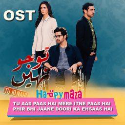 Tu Jo Nahi OST Lyrics – Sahir Ali Bagga , Bina Khan – 2018
