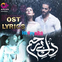 Dil-e-Bereham OST Lyrics Shuja Haider A Plus Drama